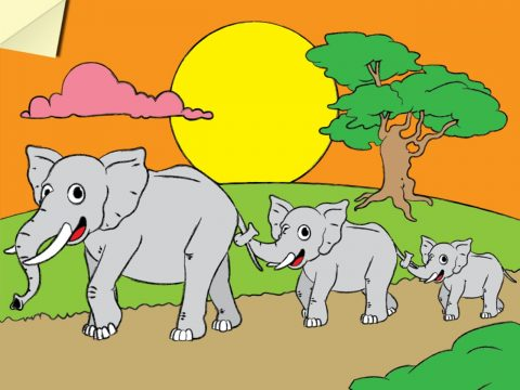 Coloring Zoo